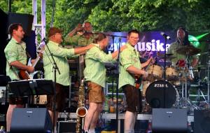 Donaumusikanten in Ulm 2015